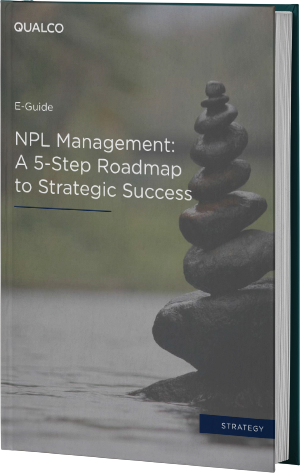 NPL Management: A 5-Step Roadmap to Strategic Success Cover